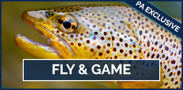 Fly and Game