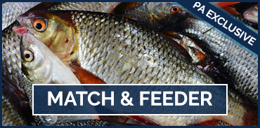Match and Feeder